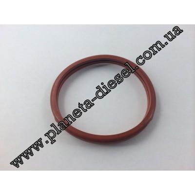 Прокладка термостата (D20 , D27) - 6012030076
