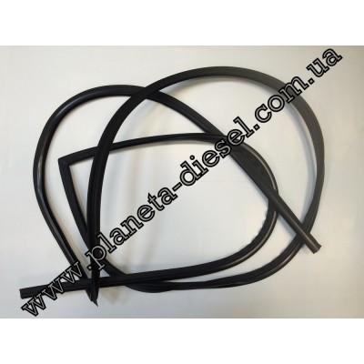 Уплотнитель лобового стекла - 7912009001